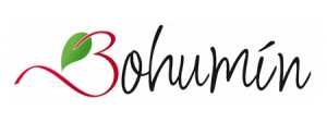 bohumin_logo_2013_02-300x112-1.jpg