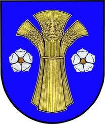 logo_dolní-lutyně.jpg